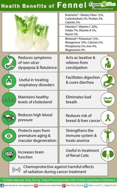 The health benefits of fennel include Anemia, indigestion, flatulence, constipation, colic, diarrhea, respiratory disorders, menstrual disorders, eye care, etc.