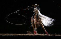 Im Finale eines Rodeo-Wettbewerbs zeigt dieser Reiter seine Lasso-Tricks. (Las Vegas, USA, von Julie Jacobson/dapd, publiziert am 16.Dezember 2012)