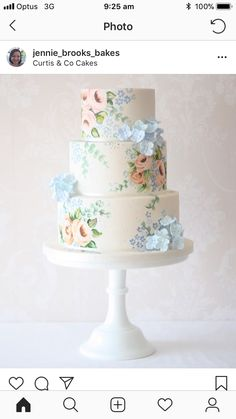 Curtis & Co. Cakes is an award winning wedding cake company. We regularly deliver wedding and event cakes across Gloucestershire, Herefordshire, Worcestershire Beautiful Wedding Cakes, Gorgeous Cakes, Pretty Cakes, Bolo Floral, Floral Cake, Floral Wedding Cakes, Wedding Cake Designs, Painted Wedding Cake, Hand Painted Cakes
