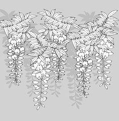 Japanese line drawing of plant flowers vector material -12 (_Download free vector,3d model,Icon--youtoart.com