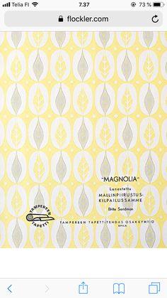 Magnolia, Magnolias