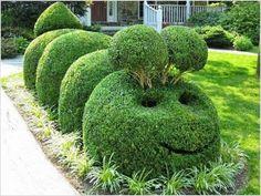 Depois de ver esses jardins você deve cuidar mais do seu - Isto é Interessante