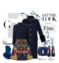 """Blue Winter"" by conch-lady ❤ liked on Polyvore featuring Gucci, Sofia Cashmere, Peter Pilotto, Dion Lee, Chloé and Christian Louboutin"