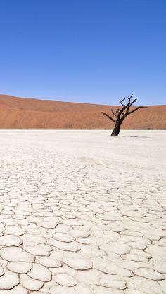 Dead Vlei, Namibia♥♥♥