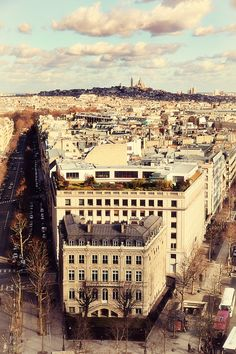 A view of Paris with Montmarte in the distance