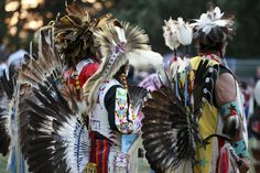 The Vibrant Costumes and Drum-Led Competitions of a Native American Tribal Gathering Native American Tribes, American Indians, Powwow Regalia, Pow Wow, Beautiful World, Bald Eagle, Nativity, Bird, Halloween