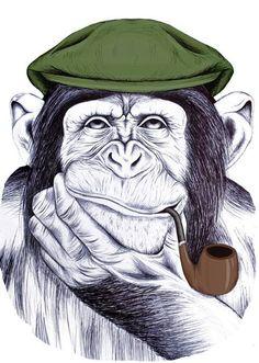 Sir Monkey