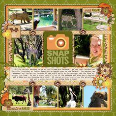 safari-lrightweb700