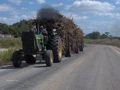 Belize Sugar Factory | New Home Photo Album - Corozal District Belize | Tripmondo