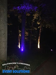 Outdoor lighting for wedding at Gramercy Mansion
