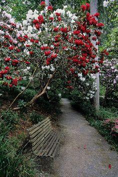 Bodnant Gardens, Conwy, Wales, England