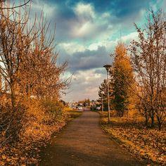 Autumn hues #way#autumn#morning#instalife#instaczech#instalike#instaphoto#worldwideediting#ligtroom#dng#photolife#dreams#happy#feelings#positive#colors#colorfullphoto#photo#tbt#like4me#instalike#instafollow#followme