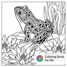 Vector Zentangle Stylized Cartoon Frog Sitting Among Lotus Flowers Water Lilies Sketch For Adult Antistress Coloring Page Hand Drawn Doodle