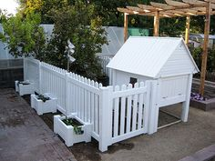 Victorian Chicken Coop and New Picket Fence. Gardening in Las Vegas   Flickr - Photo Sharing!