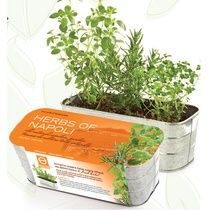 Herbs of Napoli-Prestige Herbs Growing Kit Oregano, Rosemary & Thyme Why we love it: Easy-to-grow, for indoor and outdoor use. Item contains: Organically cultivated, GMO-free seeds, soil-less growing mix, a planter WWW.GIFT-A-TREE.CA