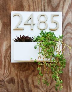 "Modern White Lacquer Wall Planter with (4) Satin Nickel Address Numbers - Free Shipping - 12""x12"""