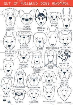 Set 24 breeds dogs, handmade by Modern vector on @creativemarket