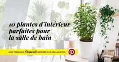 À l'heure où l'aménagement et la décoration d'intérieur prennent de plus en plus de place dans le quotidien des Français, plus aucune...
