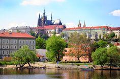 Czechy ,Czech Republic ,  katedra , cathedral ,  Praga Prague Praha Kathedrale