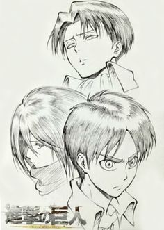 Shingeki no Kyojin Official Art - Eren, Mikasa, and Levi