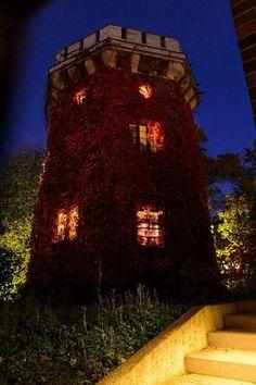 Ville Valo's home. ♥♥♥. #ville valo #HIM