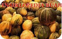 Ensiklopedia Buah: Manfaat Blewah Untuk Menyembuhkan Asam Urat dan Rematik