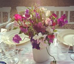 Flowers in our Falsterbo Garden / Ebba von Sydow