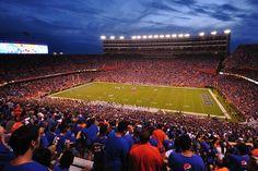 "Traveling the SEC: Brave ""The Swamp,"" Gators football in Gainesville College Football Betting, Sports Betting, Gator Game, Sun Life Stadium, County Jail, Miami Hurricanes, Nebraska Cornhuskers, Cleveland, Saving Money"
