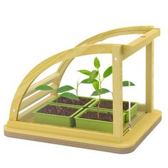 """If you thought The Lion King was a good way to teach your kids about the circle of life, try a mini green house just for them.  They'll love it... right up until you tell them they're having their plant for dinner.  """"NO MOMMY I DUN WANNA EAT IT!!! :'( """"  Mom: """"Why not, honey?""""  Child: """"IT'S A BABY!! :'( """""""