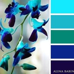 #Farbberatung #Stilberatung #Farbenreich mit www.farben-reich.com