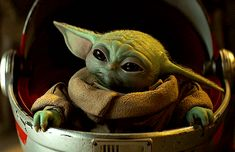 Star Wars Gif, Images Star Wars, Star Wars Pictures, Star Wars Baby, Yoda Pictures, Yoda Gif, Sherlock, Yoda Images, Star Wars Cartoon