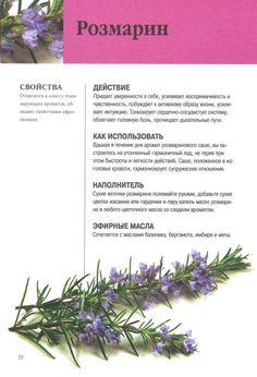 Natural Medicine, Herbal Medicine, Homemade Cosmetics, Soap Recipes, Medicinal Plants, Alternative Medicine, Growing Vegetables, Witchcraft, Aromatherapy