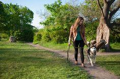 Uno de los problemas más comunes de las mascotas es perro no se lleva bien con otros animales. Algunos consejos sobre como educar un perro antisocial.
