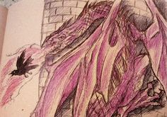 Creativity of Fià: Drago & corvo