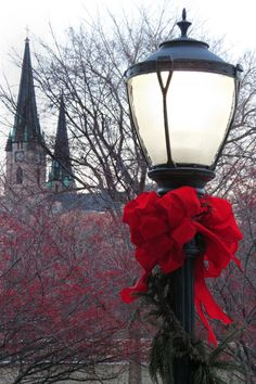 Marquette University and Gesu Church at Christmastime Marquette University, Milwaukee, Postcards, Christmas, Pictures, Decor, Yule, Photos, Dekoration