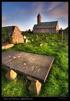 Saints and Sleepers, Sauls Parish Church, Down, Northern Ireland Copyright: Stephen Emerson