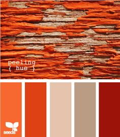 Peeling Hue l Design Seeds Colour Pallette, Colour Schemes, Color Patterns, Color Combos, Orange Palette, Red Colour, Pantone, Design Seeds, Color Balance