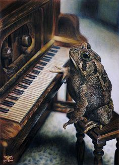 Robert, the piano playing toad. He has his grand piano. And he'll often play it at feasts or balls, or even just for entertainment. He seems very grouchy, but he's actually quite nice. Potnia Theron, Funny Animals, Cute Animals, Frog Pictures, Piano Pictures, Frog Art, Cute Frogs, Funny Frogs, Over The Garden Wall