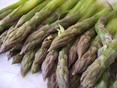 Quel mazzolin di asparagi, che vien dalla Campania! § Sagra degli asparagi - Squille (CE)
