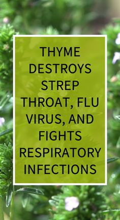 as a swish to fix a sore throat. You can likewise apply cooled thyme tea to your skin utilizing a cotton ball to help clear skin contaminations and evacuate microorganisms.