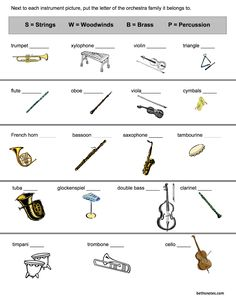 Orchestra Instruments - 3rd grade - Beth's Notes