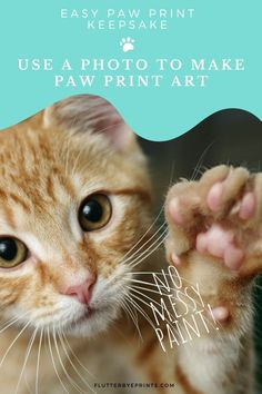 No messy ink? So cool! But how? Check out this custom paw print keepsake - you only need a photo of your cat's paw to have this unique paw print illustration customized just for you. So easy! Then you can have a perfect print, with lots of details, to treasure forever. Your heart kitty deserves something extra special. Keep a memory of your pet's paw close by or give a unique gift to the cat lover in your life. #heartdog #dogpawprint #dogmemorial #pawprintart #doglovergift copy Paw Print Art, Cat Paw Print, Paw Prints, Lovers Gift, Cat Lover Gifts, Cat Lovers, Bunny Paws, Pet Paws, Memorial Ideas