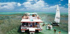 Conheça o passeio para as piscinas naturais de Picãozinho, na Paraíba. Lugar ótimo para levar a família e se divertir no barco e nadando com os peixinhos!