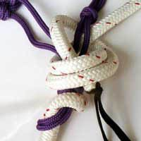 How to tie lead rope to halter to make reins