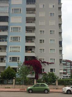 Dünya bu apartmansa sen o çiçekli balkonsun falan