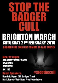 STOP THE BADGER CULL. Brighton March, Saturday 27th February 2016. Bgins at 12:30pm.