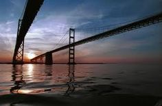 Pollution down, but Chesapeake Bay no healthier - yet Chesapeake Bay Bridge, Fun Places To Go, Federal Agencies, How To Be Outgoing, Coastal, Environment, Nature, Pictures, Travel