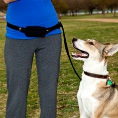 """Handsfree Leash... I wonder if I'd be allowed to run around Safa Park with Beesly?  She might not """"love"""" it, but it could be good!  $30  @Jessie have you ever seen people around Safa running with dogs?"""