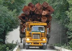 A huge Pacific Logging Truck screaming down the logging road. Dump Trucks, Cool Trucks, Big Trucks, Heavy Duty Trucks, Heavy Truck, Heavy Construction Equipment, Heavy Equipment, Logging Equipment, Train Truck