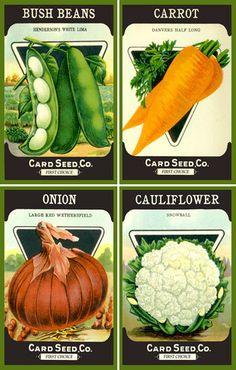 Olde America Antiques | Quilt Blocks | National Parks | Bozeman Montana : Vegetables - Vegetable Set 3